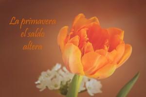 la primavera el saldo altera